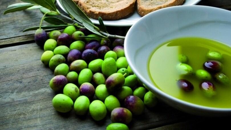 Sagre: Canino celebra l'olivo
