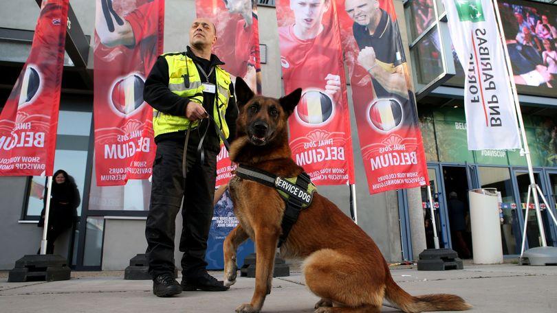Giubbotti antiproiettile per i cani poliziotto