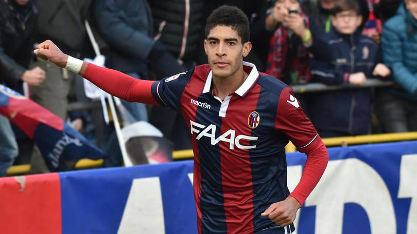 Calciomercato Napoli, Zuniga verso Bologna: idea opzione Diawara-Masina