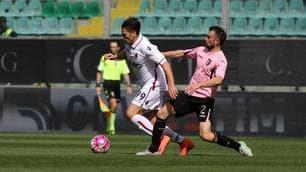 Palermo-Bologna 0-0, reti inviolate al Barbera
