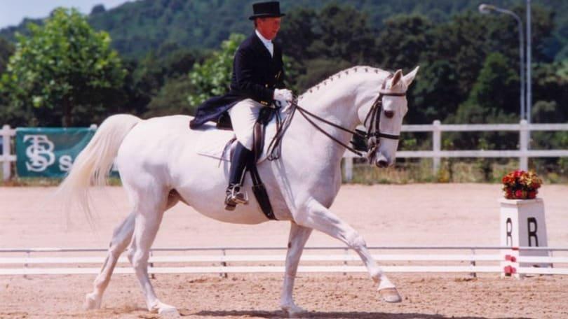Equitazione in lutto per Puccini