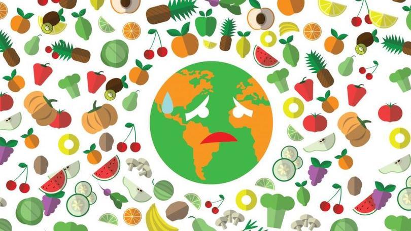 Ma quanto cibo sprechiamo? I consigli per rimediare
