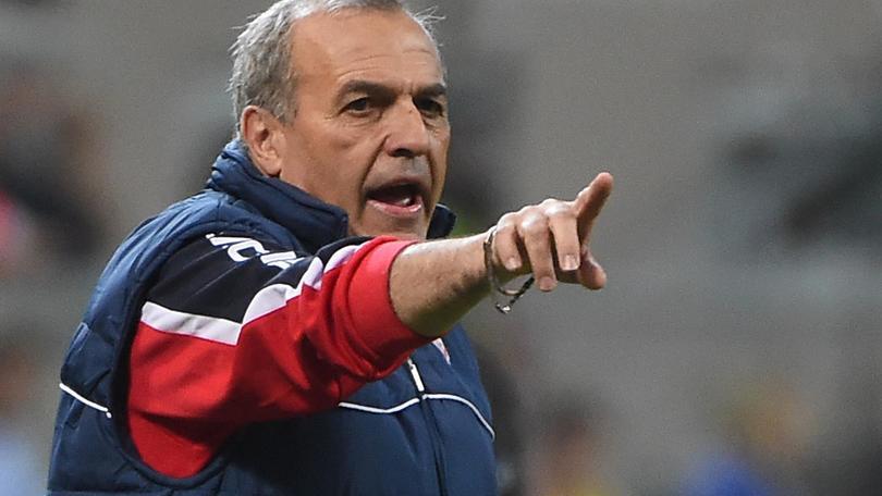 Serie A Carpi, Castori: «Con l'Empoli lucidità e aggressività»