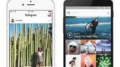 Instagram, ecco il nuovo look: cambiano logo e grafica