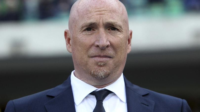 Coppa Italia, Maran avverte la Fiorentina: «Il Chievo sa sempre reagire»