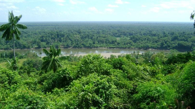 Papua Nuova Guinea, Uganda e Rwanda, viaggi indimenticabili