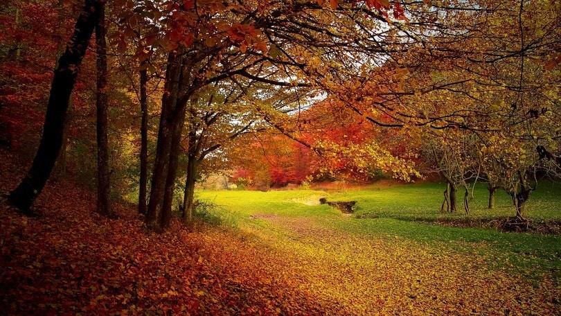 L'autunno da vivere a Roma e dintorni