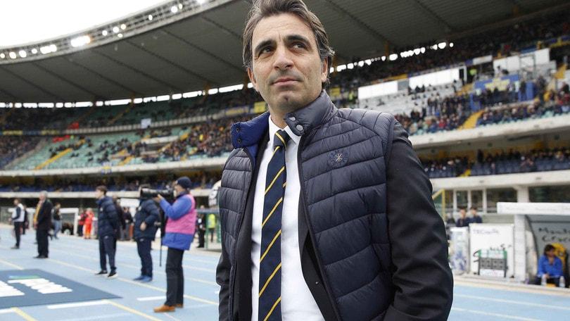 Serie B Verona, Pecchia: «Con il Cittadella sarà una bella partita»
