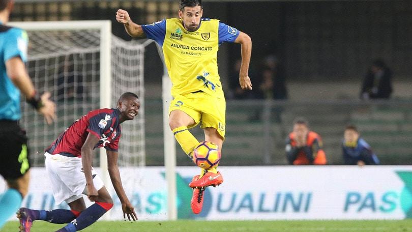 Calciomercato Chievo, Spolli: «Escludo di andar via»