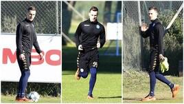 Il Napoli prepara la sfida col Benfica: differenziato per Milik