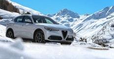 Alfa Romeo Stelvio, il successo del porte aperte