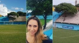 Paraguay: lo stadio col buco nella tribuna per salvare l'albero