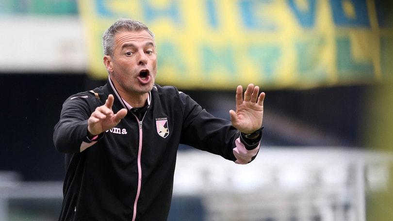 Serie A Palermo, Bortoluzzi: «La squadra vuole finire a testa alta»