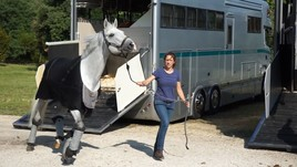 Piazza di Siena, l'arrivo dei cavalli