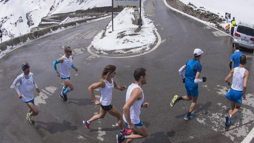 1^ Stelvio Marathon, scopri il percorso tra tornanti e la Cima Coppi