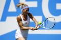 Tennis, Birmingham: la Giorgi supera il primo turno