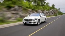 Mercedes, la collezione Avis Prestige