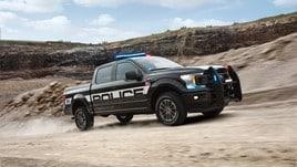 Ford F-150 Police Responder, foto