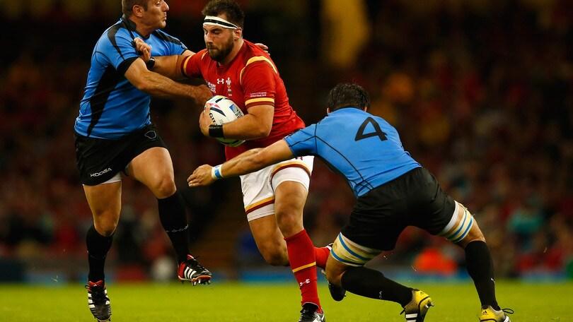 Incredibile: nazionale gallese morso da un leone!