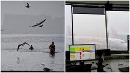 Napoli avvolta nella nebbia, bloccati i voli per Manchester