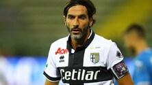 Serie B Parma, Lucarelli: «Italia? Il sistema fa acqua da tutte le parti»