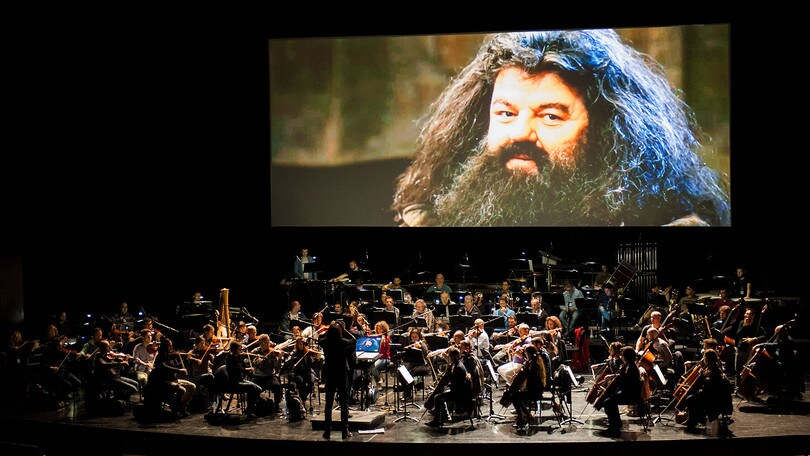 Magia a Roma con Harry Potter e la Camera dei Segreti live