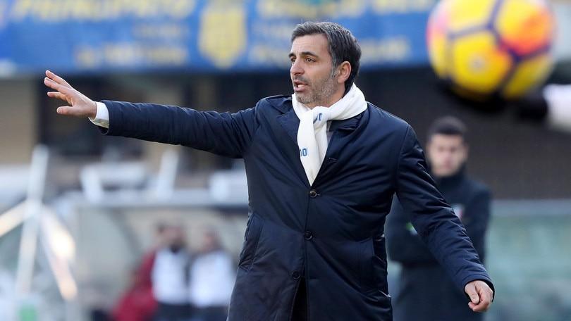 Serie A Verona, Pecchia: «Ora ci serve più continuità»