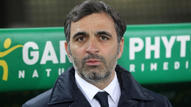Serie A Verona, Pecchia avverte il Napoli: «Voglia di fare punti»