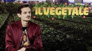 Il Vegetale, intervista a Fabio Rovazzi: «Io regista? Non mi fa volare»
