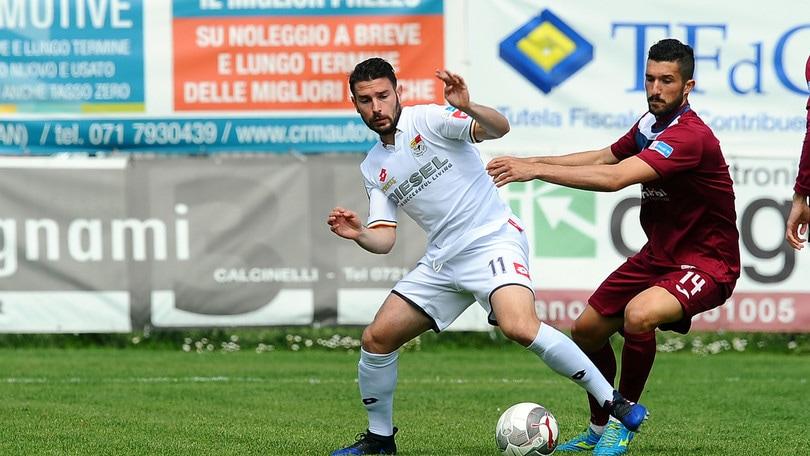 Calciomercato Spal, Bellemo in prestito al Padova