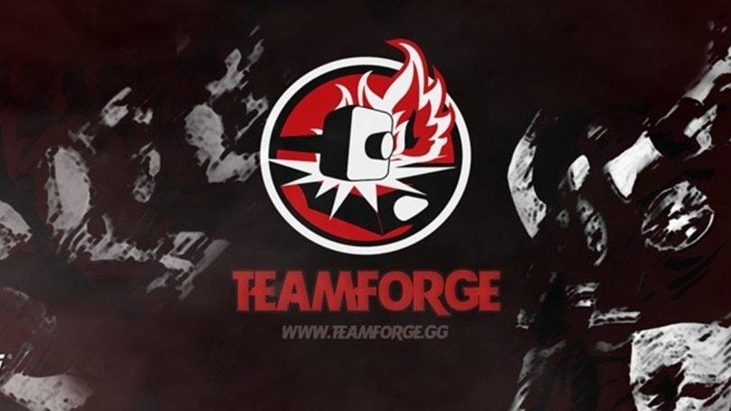 La gestione di un team: il Team Forge