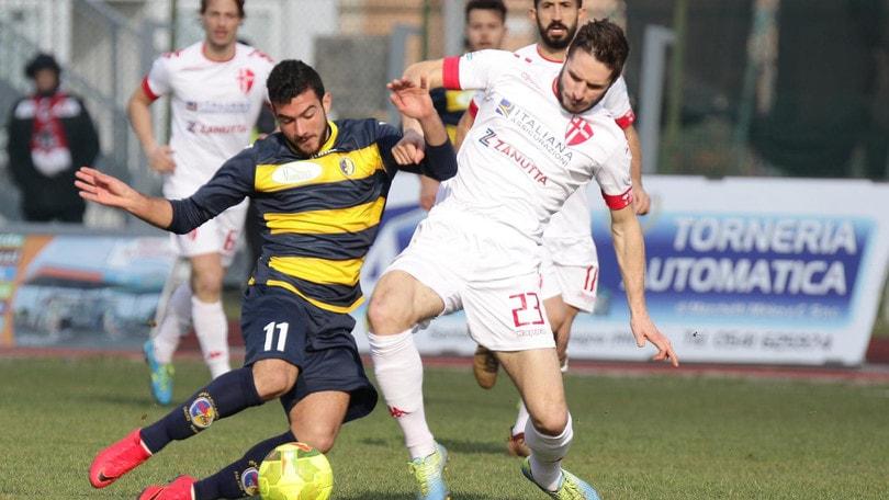 Calciomercato, il Padova pensa alla B: rinnova Cappelletti