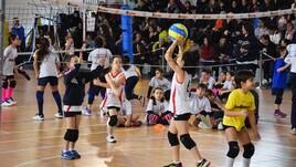 Volley: Grottaferrata si colora con la presenza di 150 bambini