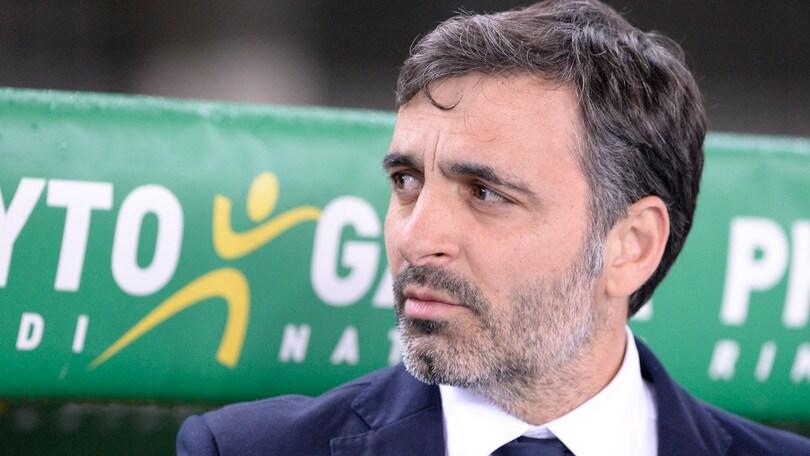 Serie A Verona, Pecchia: «Siamo aggrappati alla salvezza»