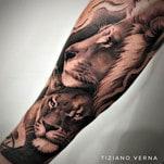 Magnini e la leonessa