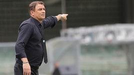 Serie A Spal, Semplici: «Il Benevento giocherà con la testa sgombra»