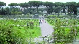 Alla scoperta di Roma by day