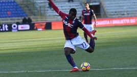 Serie A Bologna, Donsah e Pulgar rientrano in gruppo