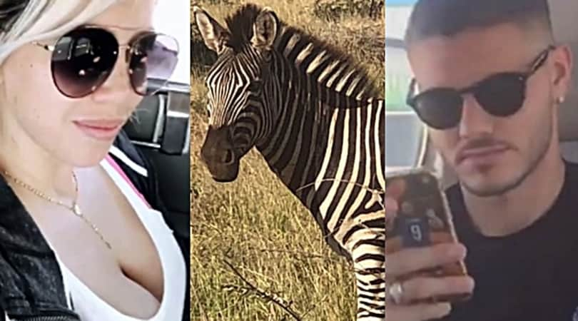 Wanda Nara e la zebra: è tam tam sulla Juventus