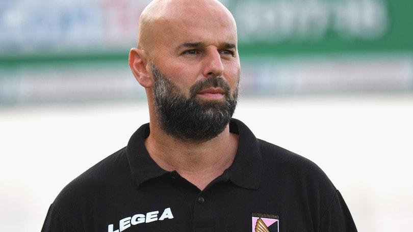 Playoff Serie B, Palermo, parla Stellone: «Contro il Venezia serve equilibrio tattico»