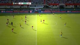 Firmino-Coutinho, la Seleçao dà spettacolo