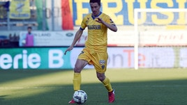 Playoff Serie B, nessuno squalificato per il ritorno tra Frosinone e Palermo