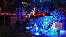 Al via il Festival ArteScienza