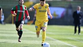 Calciomercato Bologna, è Beghetto l'alternativa a Mattiello