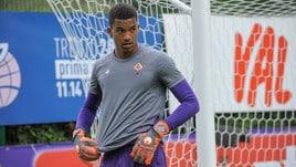 Calciomercato Fiorentina, vice Lafont cercasi