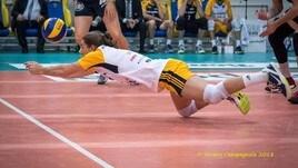 Volley: A2 Maschile, il libero Frigo a Gioia Del Colle