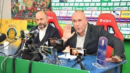 Stefano Bandecchi:
