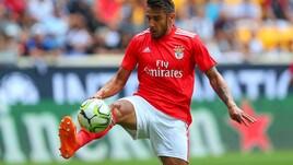ICC, Benfica favorito dal fattore campo contro il Lione