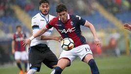 Calciomercato Bologna, ufficiale: Avenatti al KV Kortrijk