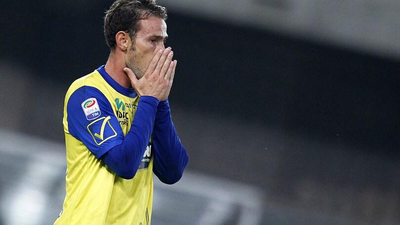 Calciomercato Chievo, ufficiale: Floro Flores ha risolto il contratto
